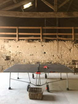 Table tennis in the barn